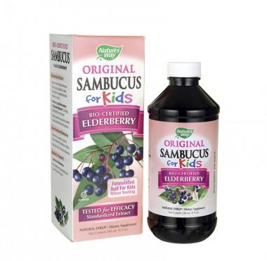 Thực phẩm chức năng SAMBUCUS FOR KIDS